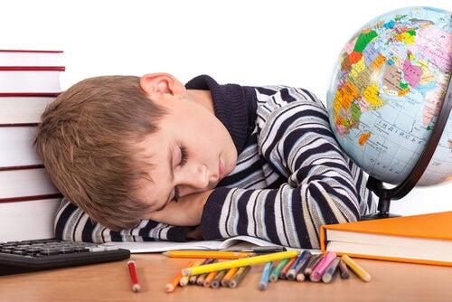 Bambino dorme sui libri