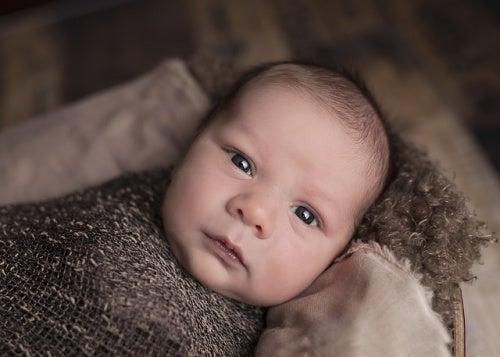 Il sorprendente cervello di un bebè