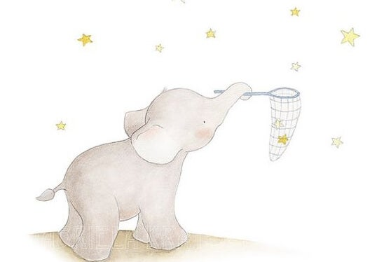 Elefante e stelle.