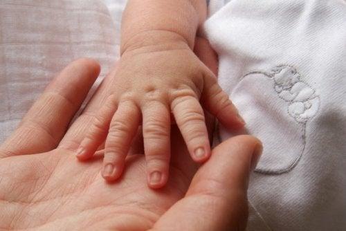 Mani della mamma e del neonato.