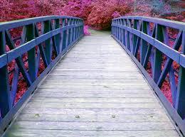 Il ponte che unisce un buon padre a suo figlio.