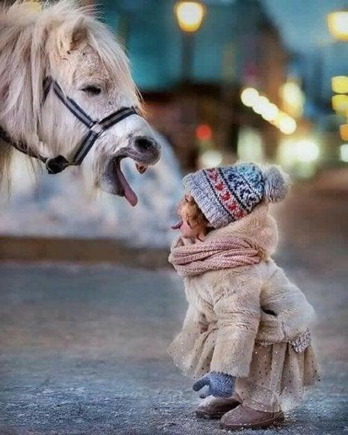 Bambina e cavallo si fanno la linguaccia