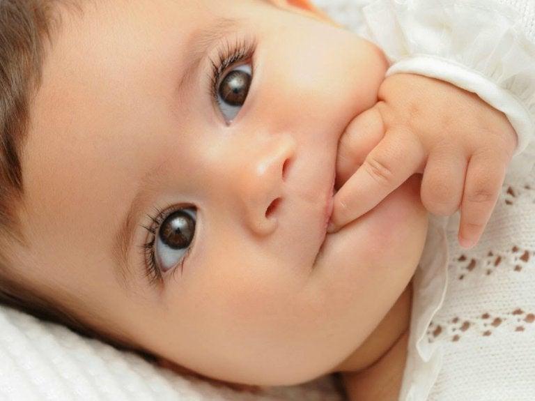 colore occhi castani