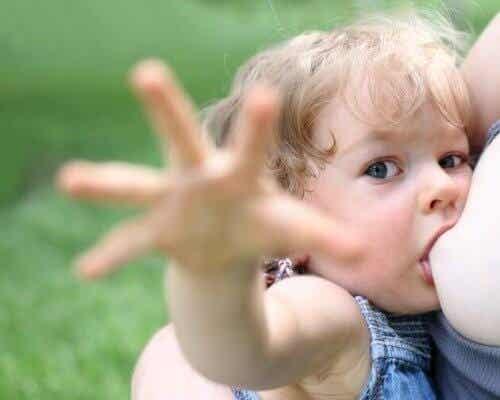 L'allattamento prolungato e i suoi benefici