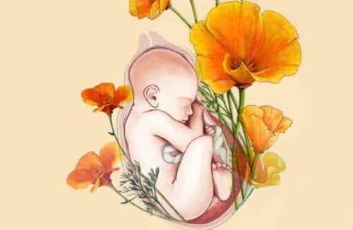 La mamma è come un habitat per il neonato