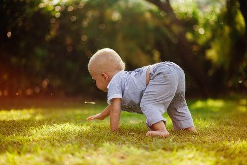 Bambino che prova a gattonare sull'erba