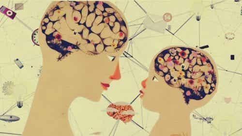 5 principi dello sviluppo cerebrale di vostro figlio che dovete conoscere
