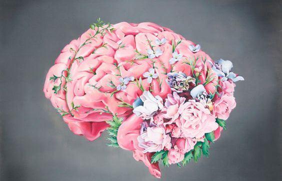 Dal cervello del bambino germogliano le abilità fondamentali che utilizzerà per tutta la vita