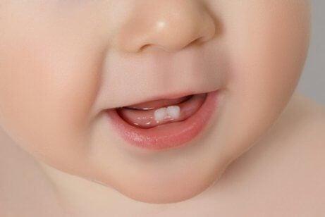 I primi denti: tutto quello che dovete sapere