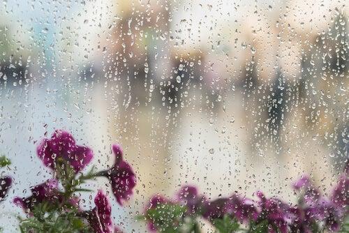 Anche il rumore della pioggia è bianco
