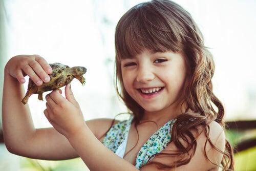 La tecnica della tartaruga porta un gran numero di benefici