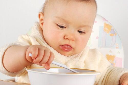 I primi alimenti solidi da dare al bebè vanno trasformati in una pappa