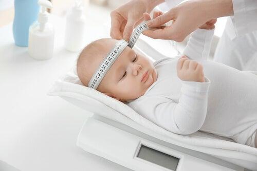 I percentili del bebè permettono di determinare se il peso e le misure del bambino si trovano nella media