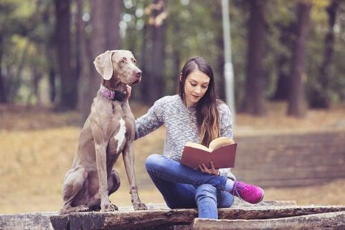 Ragazza legge un libro al parco