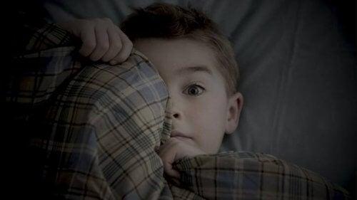 Bambino ha paura del buio