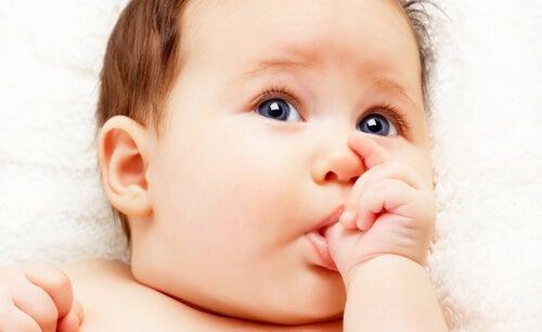 Ciucciarsi il dito è un altro dei comportamenti del neonato nei primi mesi di vita
