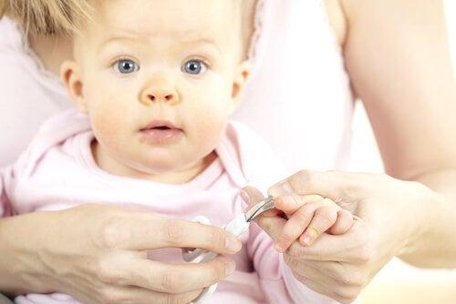 Gli strumenti impiegati per tagliare le unghie al bebè devono essere riservati esclusivamente a questo scopo