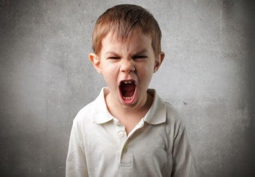 Bambino che grida