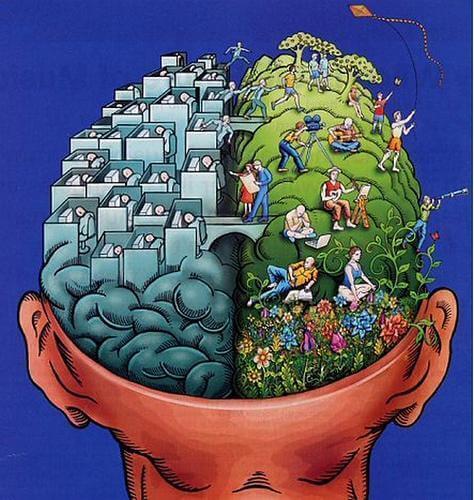 Incoraggiare l'arte significa stimolare il rafforzamento delle connessioni tra i due emisferi cerebrali