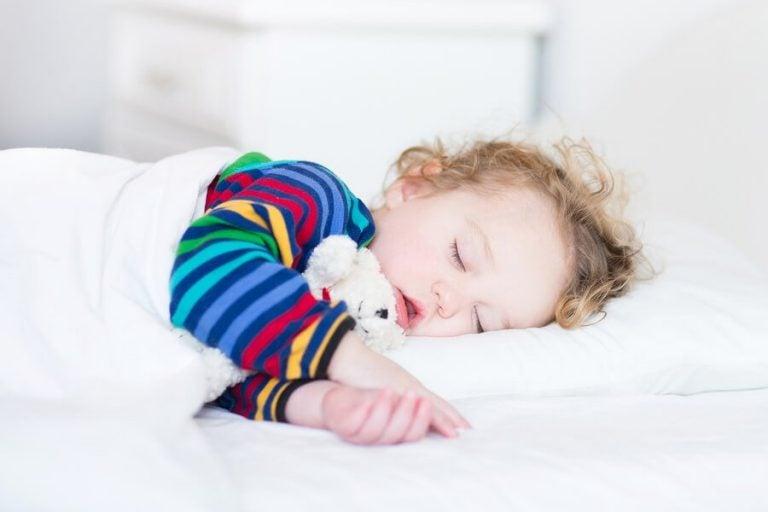 I benefici del sonnellino diurno: ecco quali sono