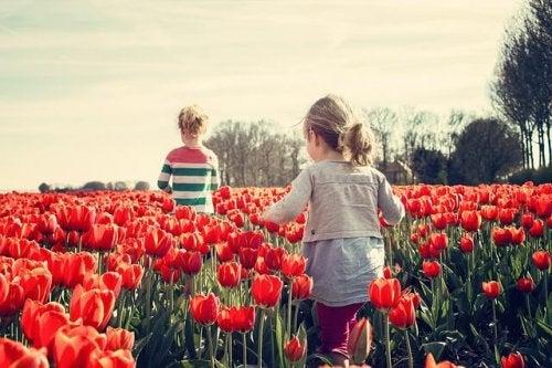 I litigi tra fratelli possono fare in modo che i bambini si allontanino per molto tempo