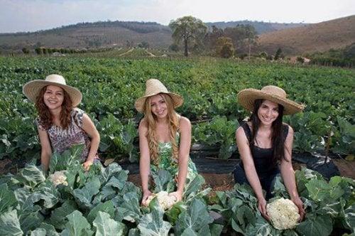 Amiche in campagna