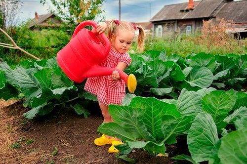 Piantate il seme che vostro figlio coltiverà per la vita