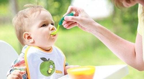I cibi semisolidi sono alimenti di cui ha bisogno il bambino a partire dai 6 mesi di età