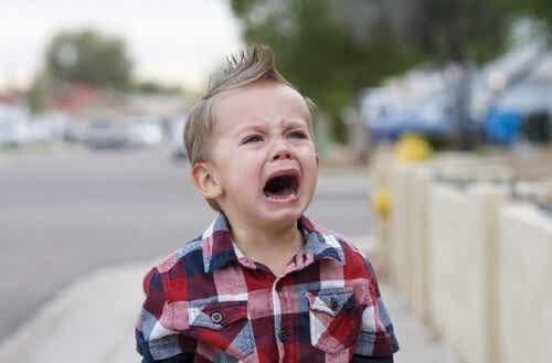 Che bisogni esprimono i comportamenti dei bambini?