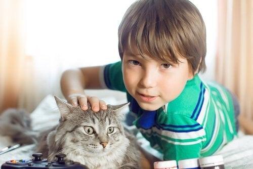 Bambino con il suo gatto