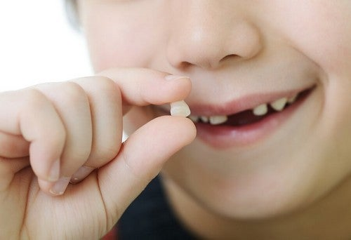 Denti da latte: quando iniziano a cadere e in che ordine
