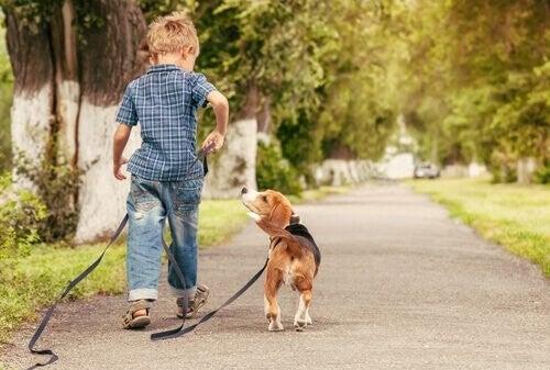 Se vostro figlio ama gli animali si prenderà cura di loro
