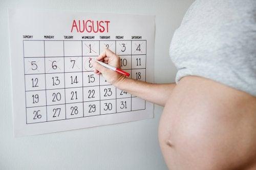 Calendario di nascita