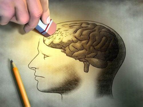 Non è ancora ben chiaro come funzioni la memoria del bambino.