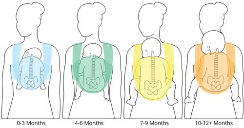 il bambino va trasportato in modo diverso, a seconda della sua età