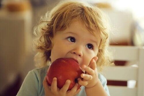 bimba addenta mela rossa tenuta con le mani