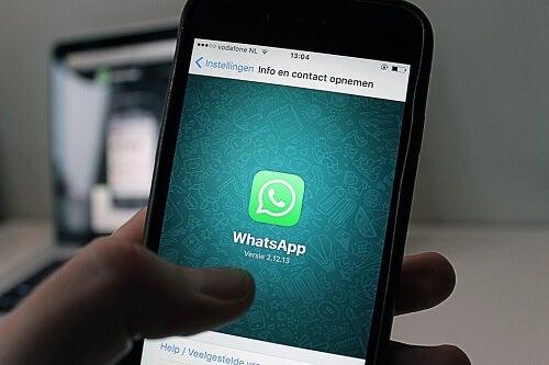 I gruppi WhatsApp dei genitori della scuola