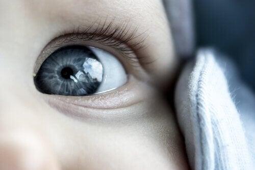 Occhio azzurro neonato