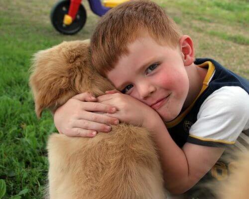 Prendersi cura di un animale
