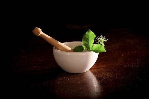 11 piante medicinali da assumere in gravidanza