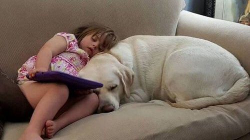 Sadie con il suo cane