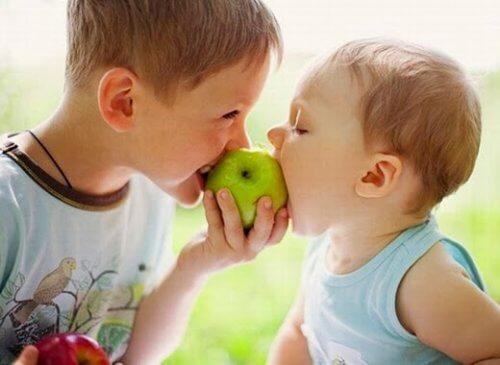 Alimenti che rafforzano il sistema immunitario