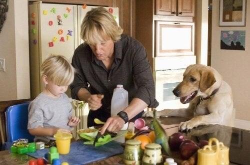 Amore per gli animali e bambini: i film più adatti