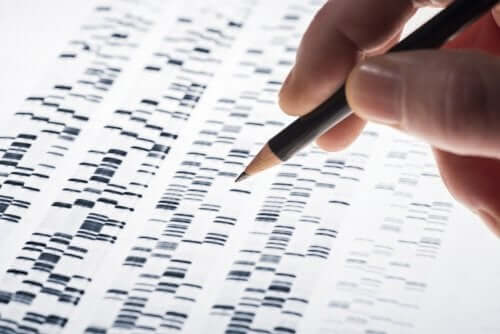 il test del DNA fetale è in grado di identificare tre tipi di trisomia