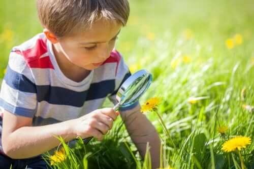 Bambino che guarda l'erba con la lente di ingrandimento