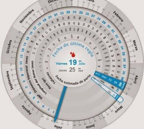 Come calcolare la data di concepimento