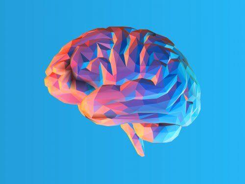 Che cos'è la teoria del carico cognitivo