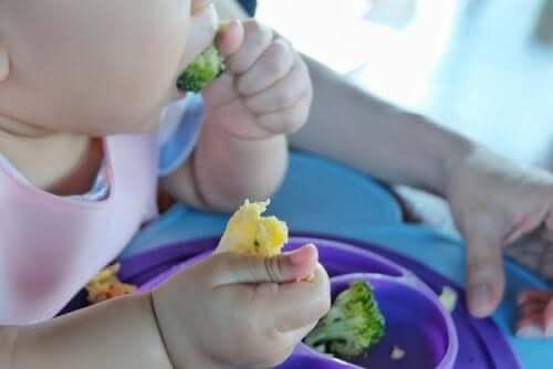 Neonato che mangia secondo il baby led weaning