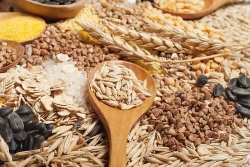 cereali grano avena segale