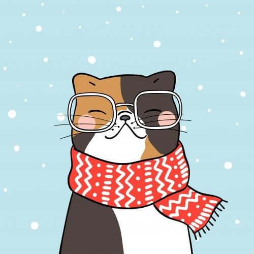 gatto con occhiali e sciarpa che sorride